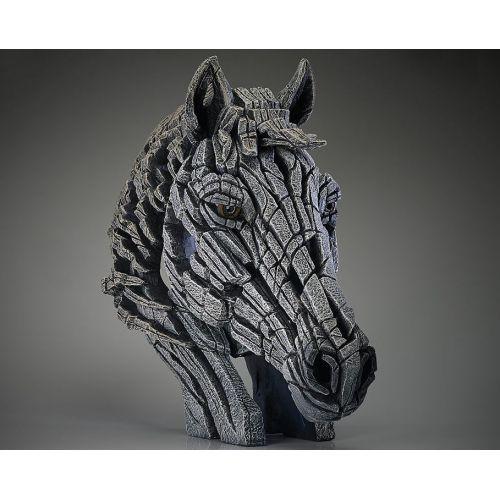 """""""WHITE HORSE """" de Matt Buckley"""