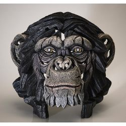"""""""Chimpanzé"""" de Matt Buckley"""