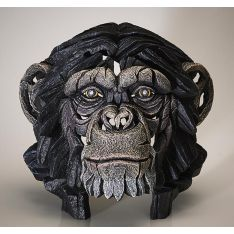 """Chimpanzé"" de Matt Buckley"